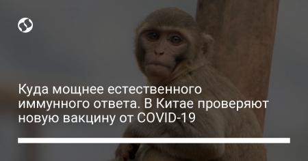 1313ad1b2a7304742fe9dfbf010eb5a2